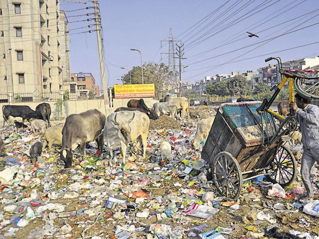 The situation in Ghaziabad remains grim due to the rampant use of polythene carry bags. Environment activists said enforcing the ban on the ground will be the major challenge.