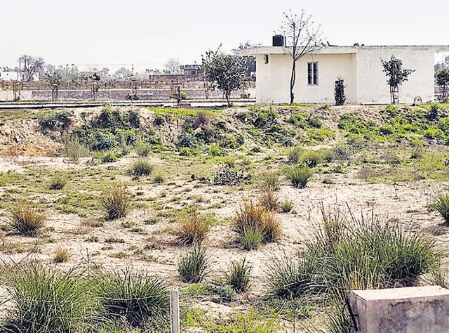 Goindwal Sahib,basic amenities,medical education