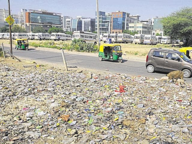Garbage dumped along roads is a common sight in Gurgaon as the city lacks an efficient waste disposal system. Authorities have been told to beautify all major roads before the summit.