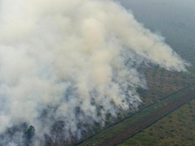 This file picture taken on September 17, 2015 from a Kamov helicopter operated by Indonesia's Disaster Mitigation Agency shows fires burning at a concession area in Pelalawan, Riau province.
