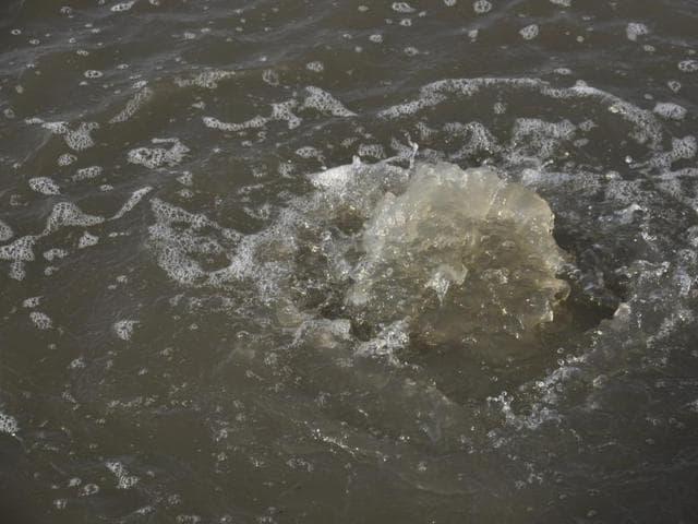 teenage sisters drown