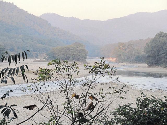 Ramganga river inside Corbett Tiger Reserve.