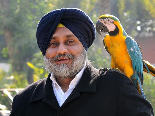 Sukhbir Singh Badal,Shiromani Akali Dal,Chandigarh