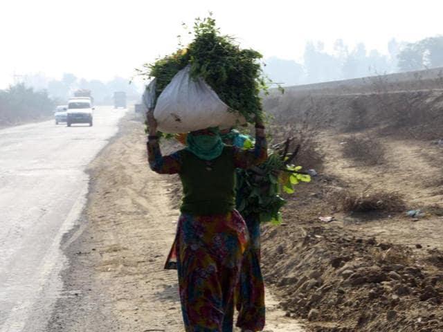 women,khap,Haryana