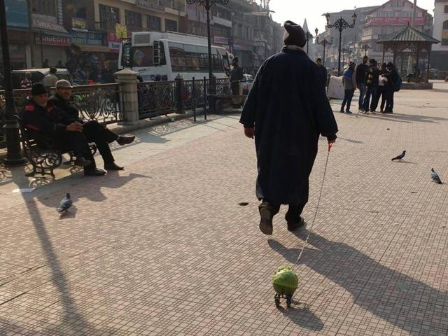 Artist makes a point with 'cabbage walk' across Srinagar