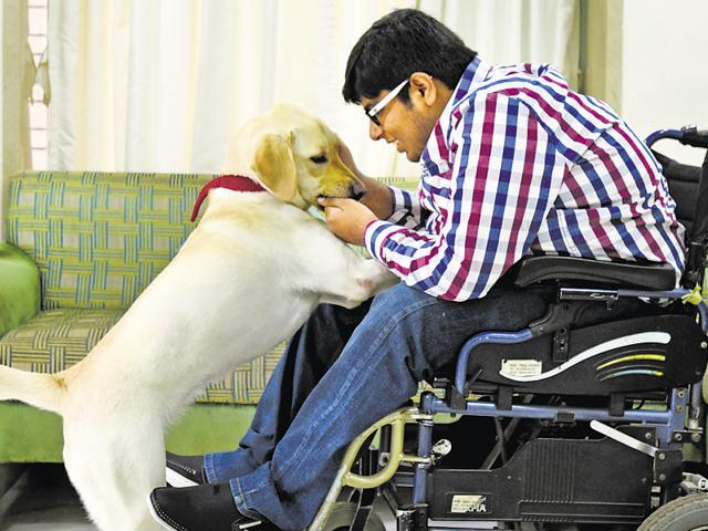 Karan Shah, who has spinal muscular atrophy, says his pet dog helped him out of depression and gave him a career.