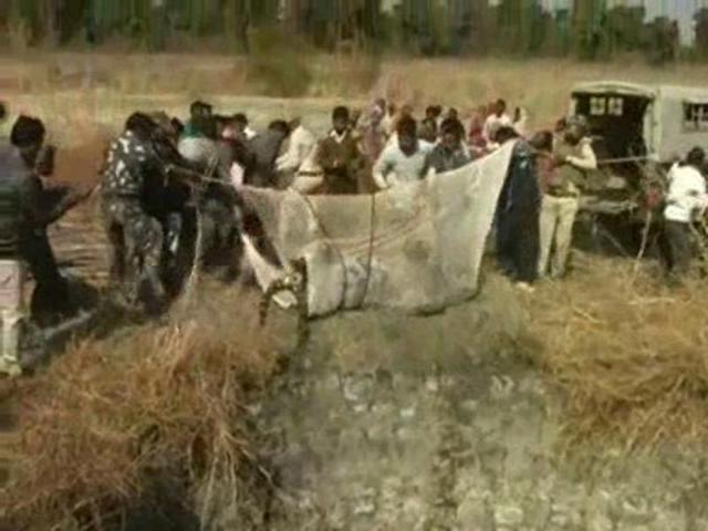 Tiger carcass recovered from well in Pench Tiger Reserve buffer zone