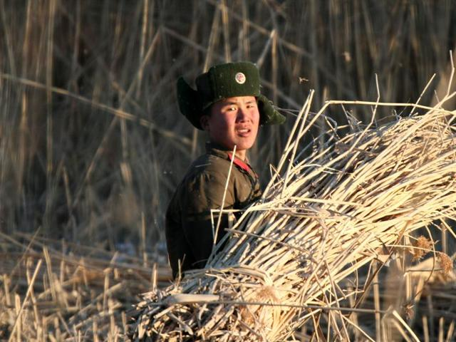 North Korean soldiers walk through a field in Sinuiju, North Korea, as seen from across the border in Dandong in northeastern China's Liaoning province.