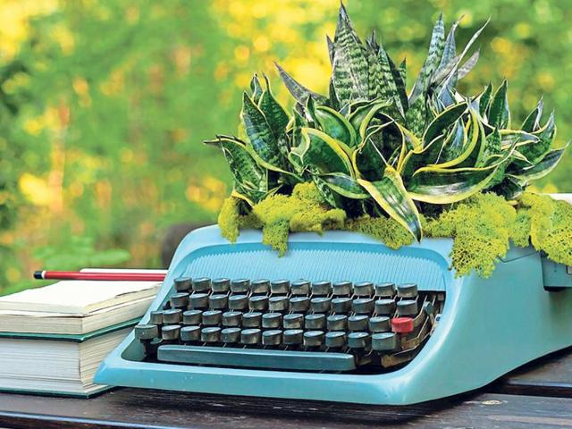 This quirky planter will get a lot of attention from your guests.