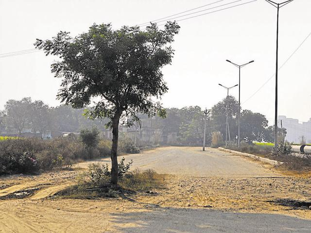 Several obstructions, including trees, high-tension transmission towers and factories, have to be removed from the land acquired for the construction of the Dwarka Expressway.