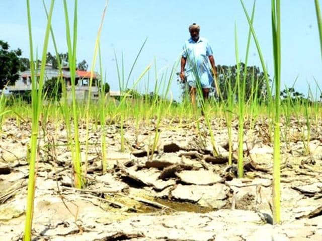 India drought problems
