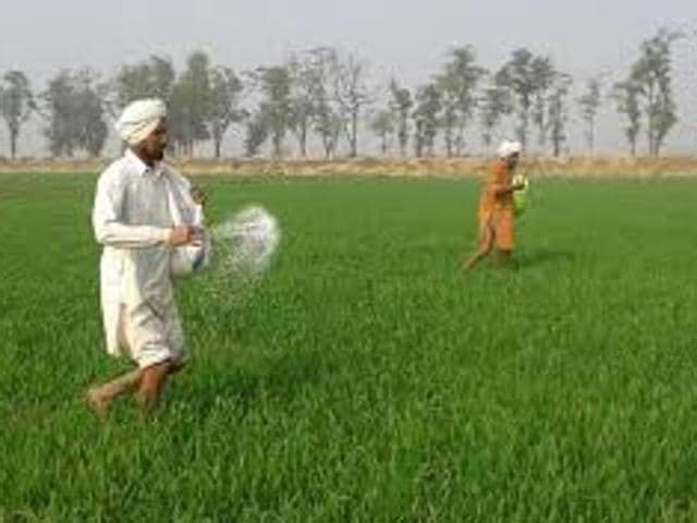 A spokesperson of the agriculture department said here that the state had 12.44 lakh metric tonne urea available and had supplied adequate stock to cooperative societies and private dealers across Punjab.