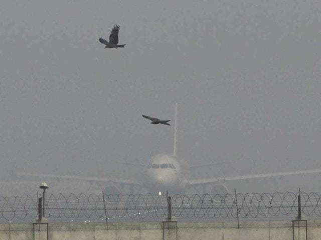 Fog,Flights,Delhi airport