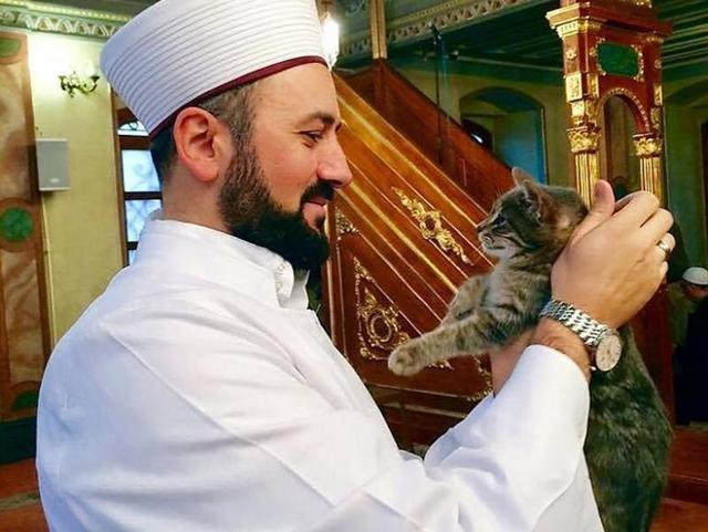Mustafa Efe opens the doors of Aziz Mahmud Hudayi Mosque in Istanbul to stray cats, so that the felines can escape the cold weather.