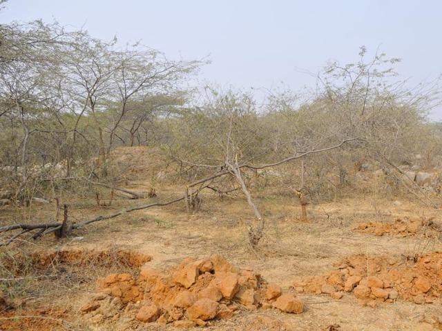 Madhya Pradesh,Jabalpur,tribal girl missing