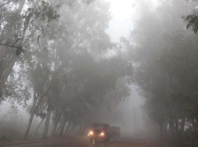 Winters,North India,Fog