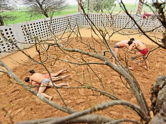 Time for some daav pech: Wrestlers grapple under an Acacia tree at the Doomcheri akhada near Chandigarh. (Photo by Gurinder Osan/ Hindustan Times)