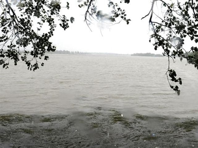 Sirpur lake has been recognised as Important Bird Area.(Shankar Mourya/ HT File Photo)