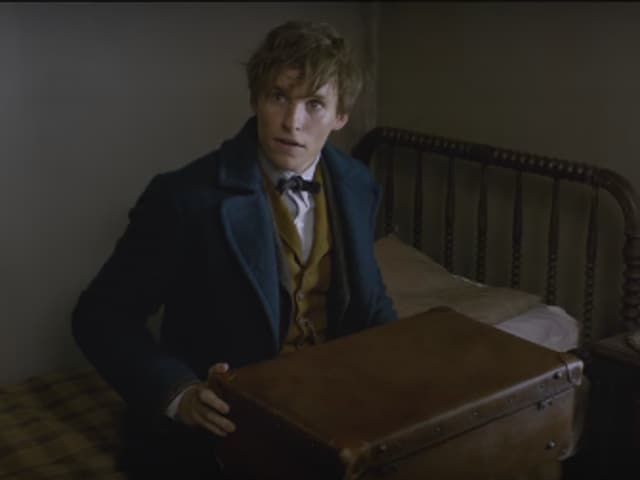 Fantastic Beasts And Where To Find Them,Fantastic Beasts,Harry Potter