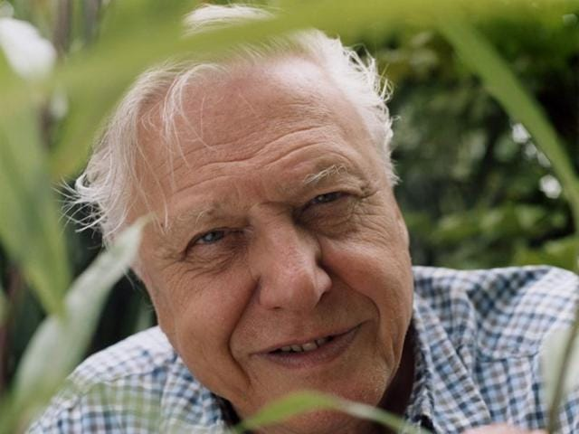 """David Attenborough, the legendary broadcaster known for his close interaction and encounters with wildlife across the globe, believes the """"seeds of damage"""" that have already been planted will lead to the destruction of the natural world within a generation."""