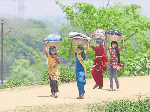 The survey, which was conducted after a gap of four years, shows a drop of 33 counts in the number of girls since 2011.