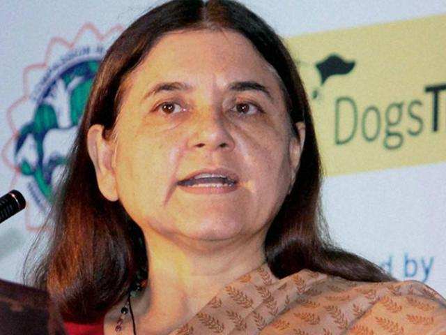 Prenatal sex test: Maneka issues clarification, says just 'point of view'
