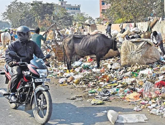 MCD strike,municipal workers,garbage