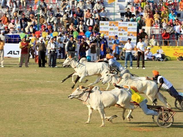 Grewal Sports Stadium,Ludhiana,Supreme Court