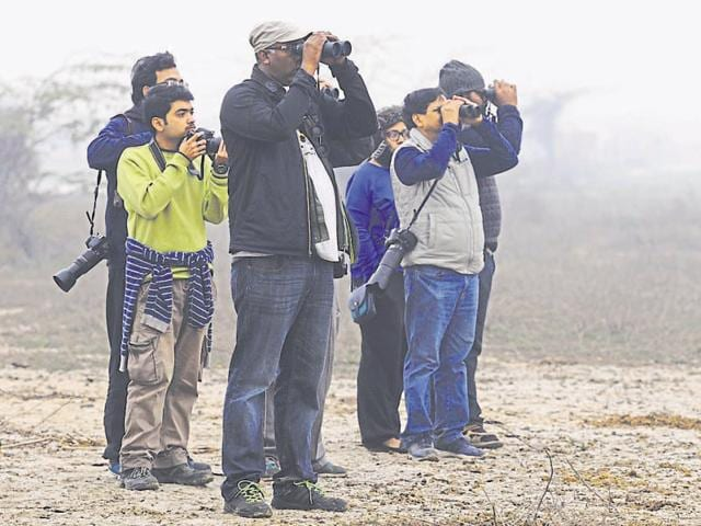 Birders gathered at wetlands and parks in around 100 groups, with binoculars, cameras and bird dictionaries on Big Bird Day. The observations by all groups will be compiled and released on February 8.