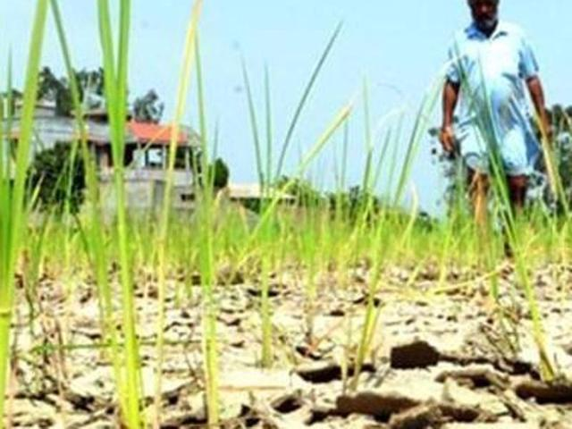 Debt-ridden farmer commits suicide by consuming poisonous substance