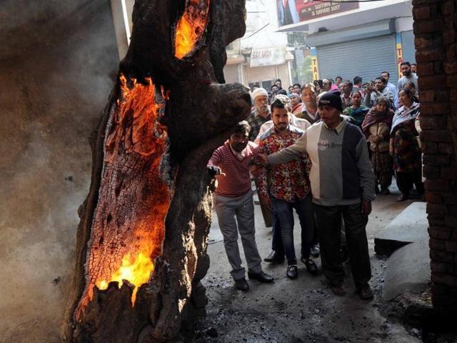 Patiala,Burning tree,Mysterious blaze