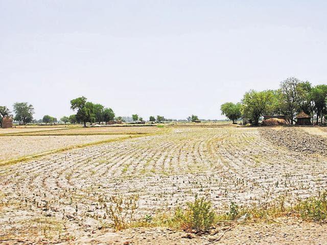 DDA,Land,Plots