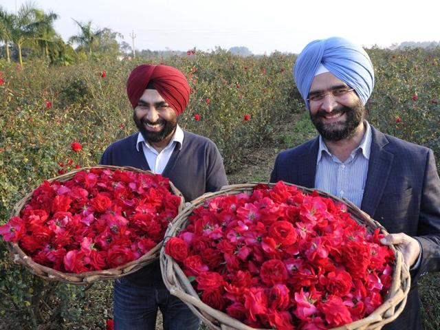 Maninder Pal Singh Riar (left) and Manjeet Singh Toor are happy. The secret is their roses are blessed. The flowers are offered at the Chintpurni and Jwalaji shrines. (Below) Their rose-extract plant at Kangar village, Hoshiarpur.