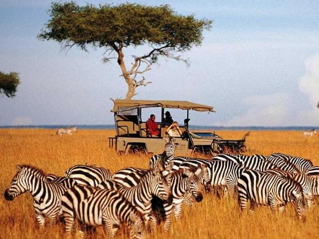 Kenya may be famous the world over for its diverse wildlife, but the country is home to several other attractions as well.