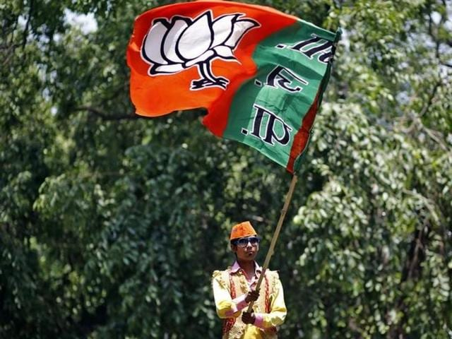 A BJP supporter waves the party flag during celebrations after learning of initial poll results outside the party headquarters in New Delhi.