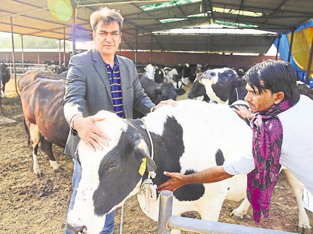 Rajasthan news,techie leaves bank job,micro-finance