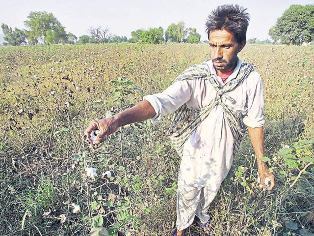 Critics have often described the government, which rode to a landslide poll victory in 2014 promising to usher in 'achhe din', as 'pro-corporate' at the cost of ignoring the farmers.