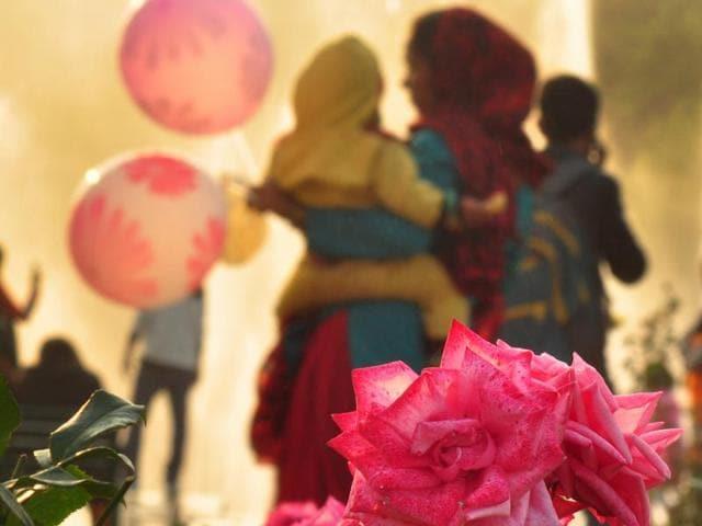 North Zone Culture Centre,Assam,Rose Festival