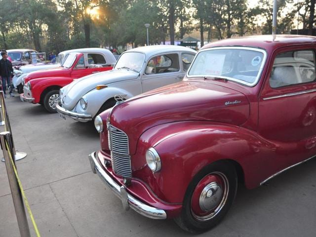 Vintage cars on display at art museum gallery during last day of rose festival at Sector 10, Chandigarh on Sunday.