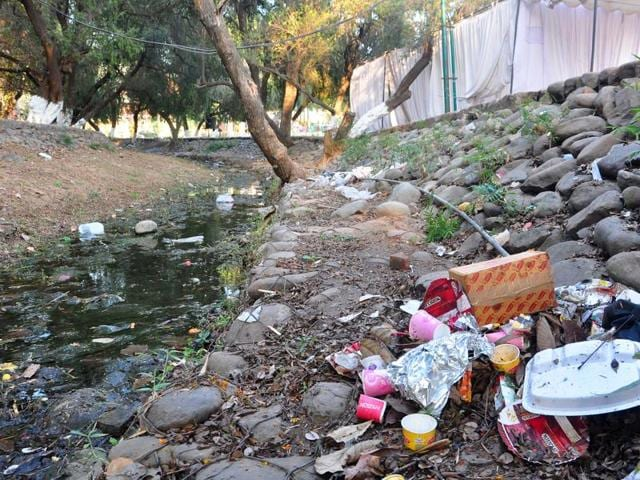 Litter  strewn along  the 'choe' running  through Rose Garden in Chandigarh on Monday.