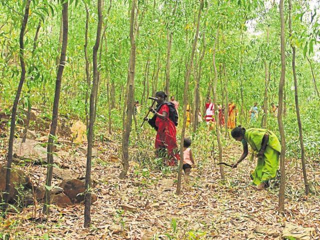 tribes people in Madhya Pradesh