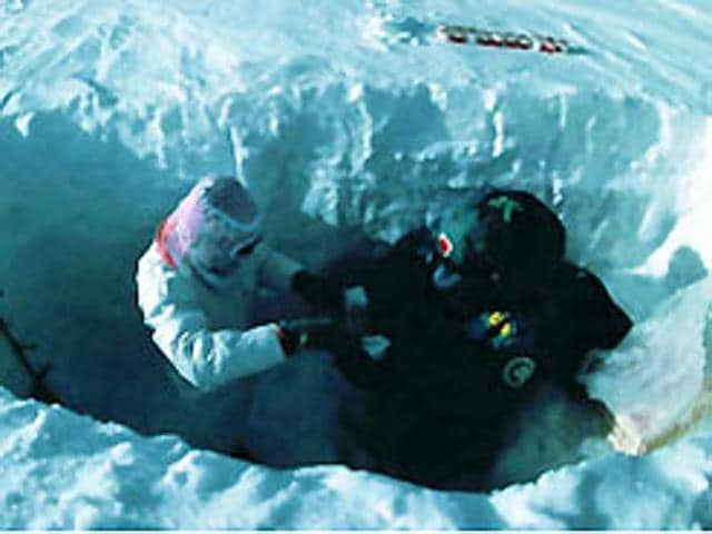 South Pole expedition,Chinese researchers