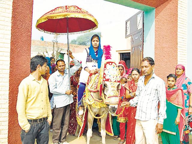 Bride rides the 'ghodi', Haryana village shows the way