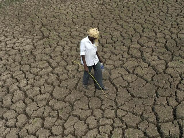 A shepherd walks on the bed of the dried-up Osman Sagar Lake on the outskirts of Hyderabad on Friday. The estimate based on a modelling study said climate change could kill more than 500,000 adults worldwide in 2050.(AFP)