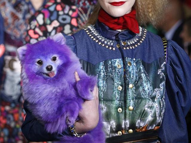 A dog accompanies models who present creations by designer Manish Arora as part of his Fall/Winter  collection.