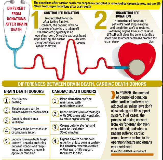 Brain Death and Organ Donation | What is Brain Death?