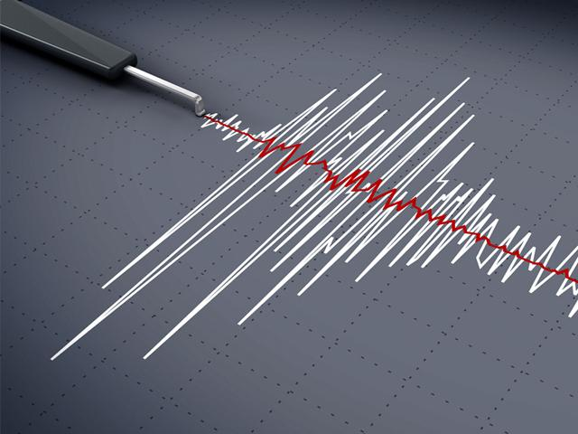 The tremor was felt at 4pm in the northeastern states with its epicentre located in Assam's Darrang district.