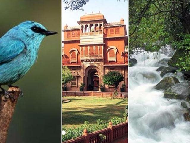 Holi weekend travel,Weekend travel from Delhi,Weekend travel from Bangalore