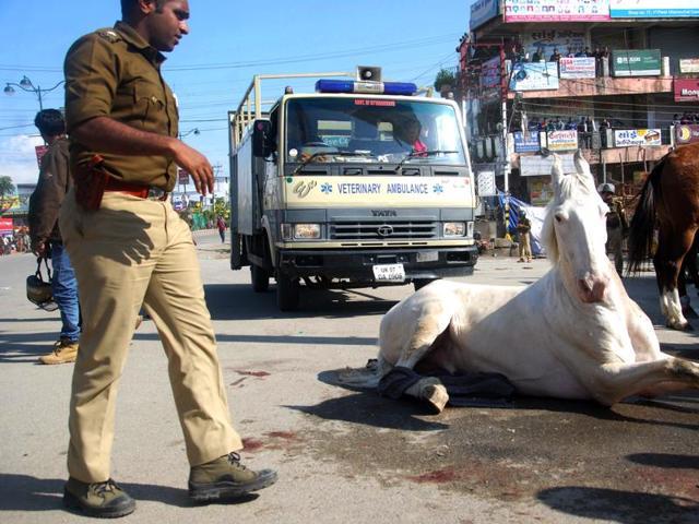 MLA Ganesh Joshi beating a horse during a BJP rally at Vidhansabha in Dehradun, India, on Monday
