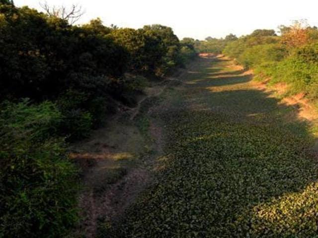 Sutlej-Yamuna Link,Shiromani Akali Dal,Punjab